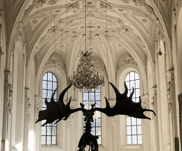 Tiny Monsters And Giant Antlers: The German Museum Of Hunting And Fishing in Munich.